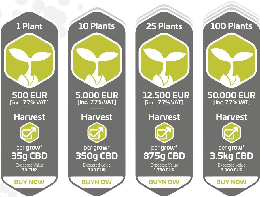 CannerGrow - Make Money with Bitcoin & Hemp CBD oil!